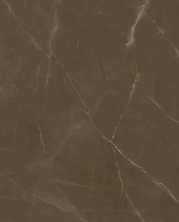 THESIZE SURFACES - NEOLITH
